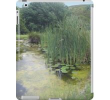 The Hearth and Soul Retreat iPad Case/Skin