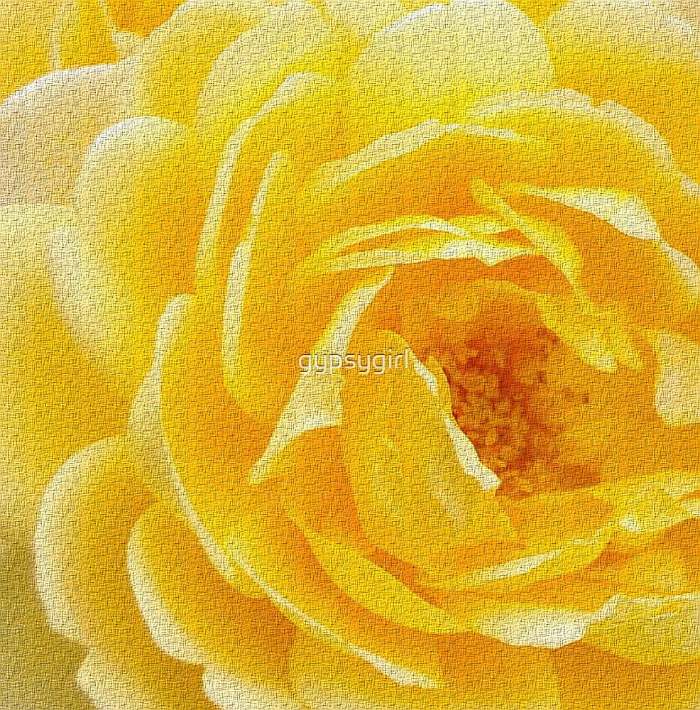 Rose by gypsygirl