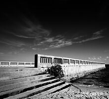 The Pier by Roberts Birze