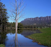 photoj Australia - Tasmania, Mt Roland by photoj