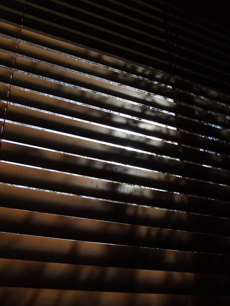 blinded by Beck Johnston