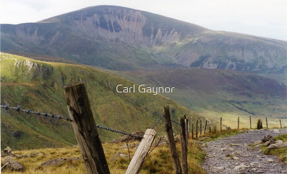 Snowdon Track - Wales by Carl Gaynor