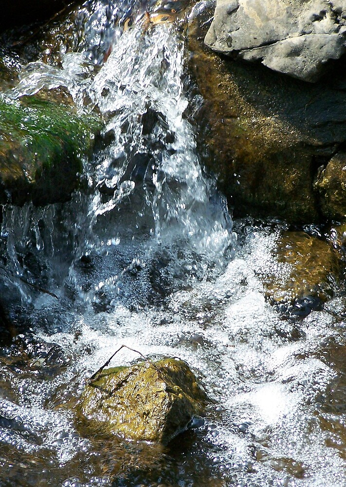 the water like dimond that shine by dianeschafbuch