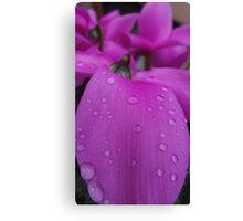 Autumn Petal Pink (1) Canvas Print