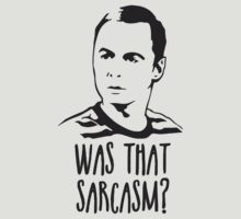 Big Bang Theory Sheldon Sarcasm by tvgeek