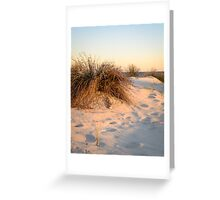 In the dunes Greeting Card