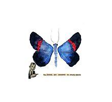 Butterfly Museum Corridor #2 by Carol Kroll
