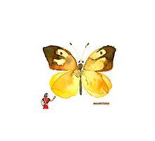 Butterfly Museum Corridor #3 by Carol Kroll