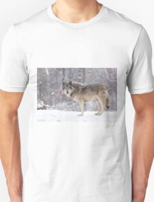 A lone Timber Wolf in the snow T-Shirt
