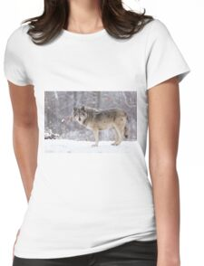 A lone Timber Wolf in the snow Womens Fitted T-Shirt