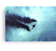 F16 Canvas Print
