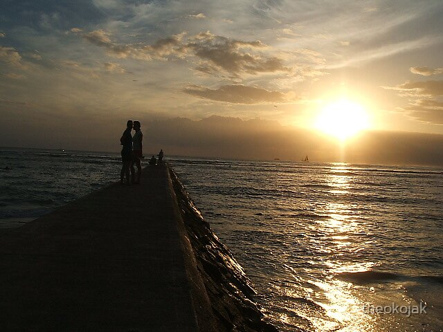 Hawaii Wedding Couple by theokojak