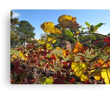 Passion Flower Vines in Autumn Canvas Print