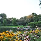 The Pond, Central Park - New York City by Hilda Rytteke