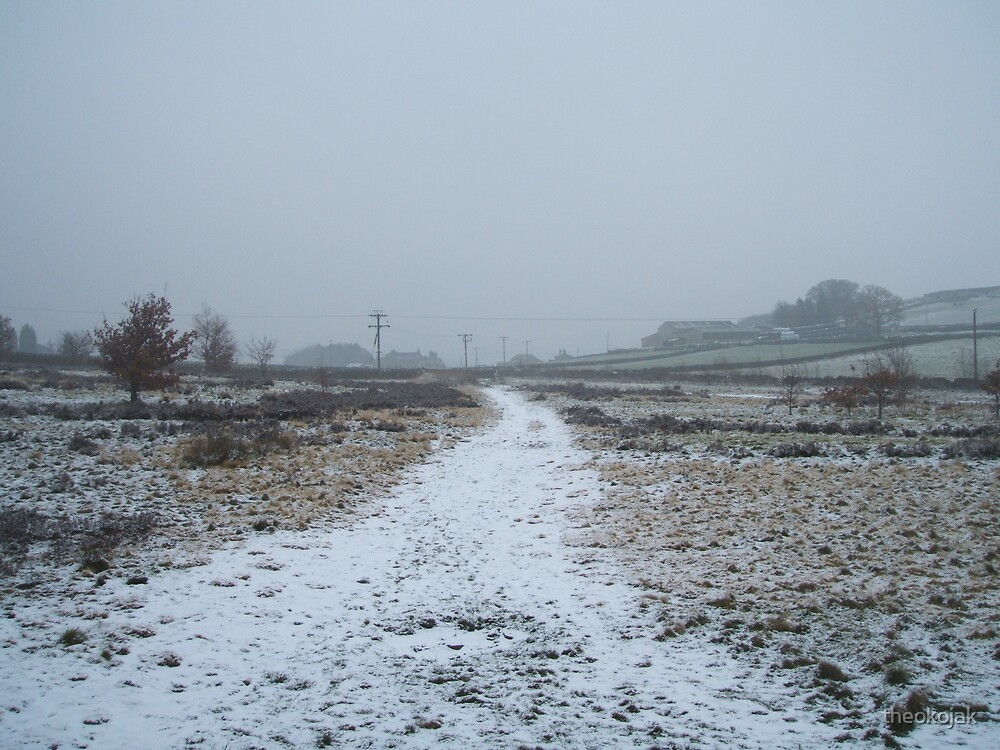 Snow pathway by theokojak