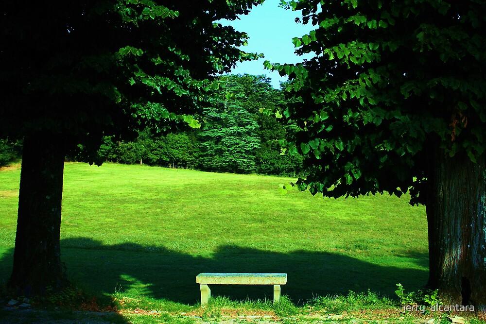the bench 2 by jerry  alcantara