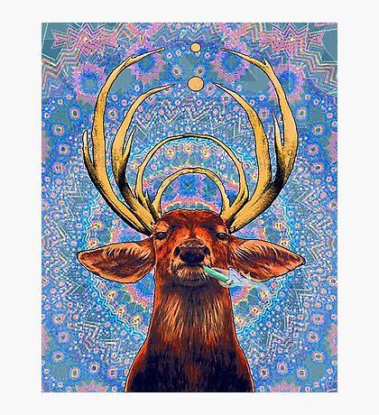Trippy deer Photographic Print