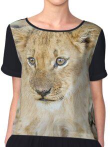 lion cub 2 Women's Chiffon Top
