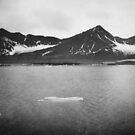 Tempelfjorden by Daphne Kotsiani