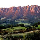 photoj Australia - Tas Mt Roland, Sunrise by photoj