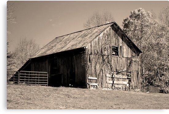 Rusty Old Barn II by Gary L   Suddath