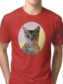 Pibbs the Cat Tri-blend T-Shirt