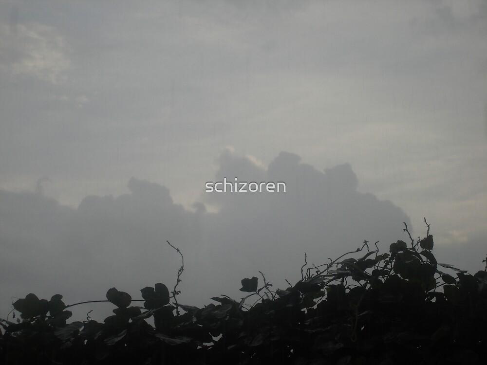 storm is coming by schizoren