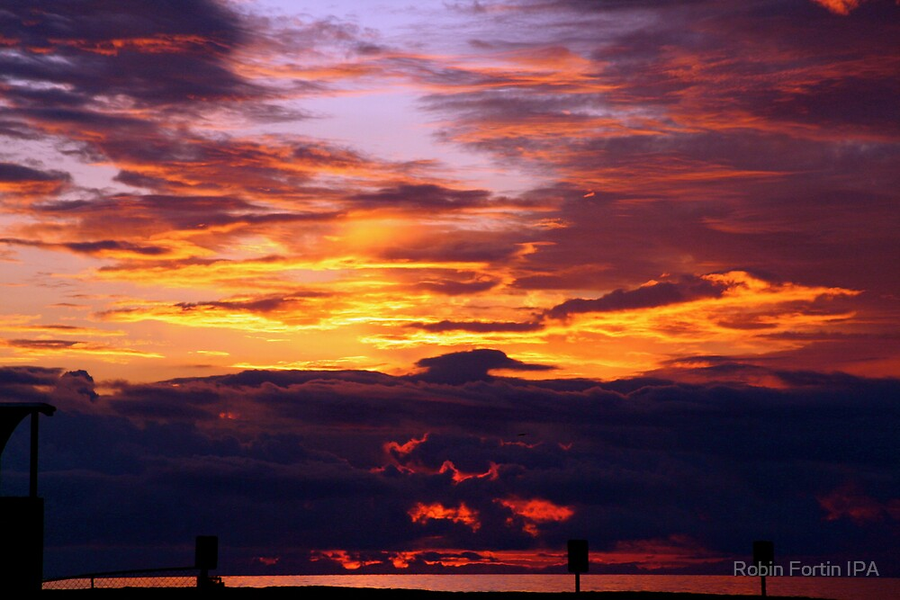 Sky on Fire by Robin Fortin IPA