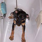 I HATE BATH TIME! by Stevie Toye