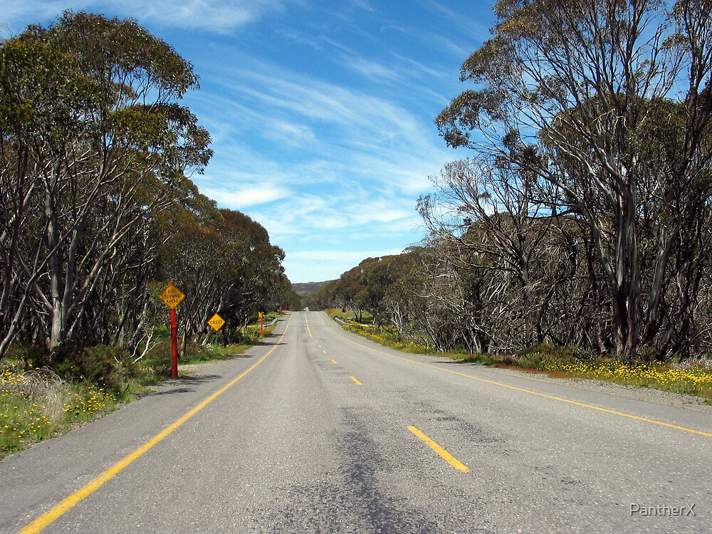 Great Alpine Road by PantherX
