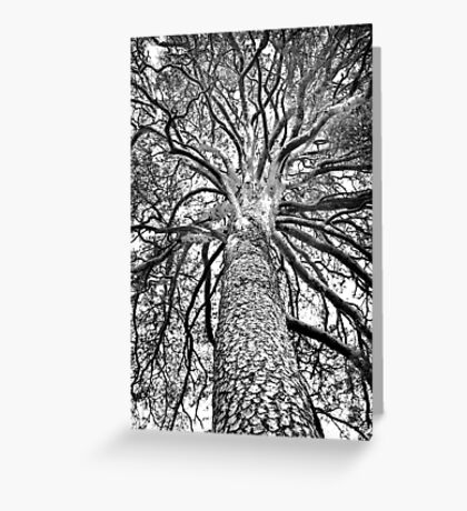 Countless Hands Greeting Card