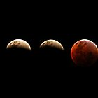 Eclipse Time Line by Rebecca McLean