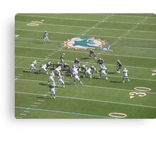 dolphins defence Canvas Print