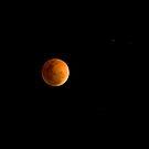 Lunar Eclipse by Michael Eyssens