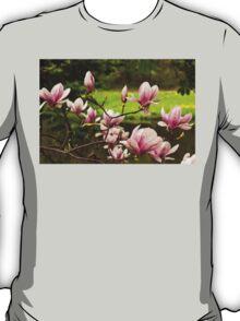 Blooming Magnolia Tree Close-up T-Shirt