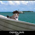 captain jack by jack01