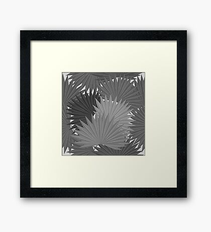 Tropical leaves of palm tree Framed Print