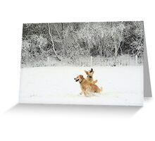 Spot the (Snow) Ball! Greeting Card