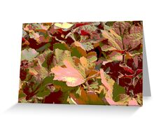 leaf background Greeting Card