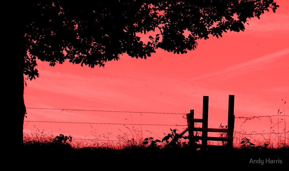 Red sky in the morning... by Andy Harris