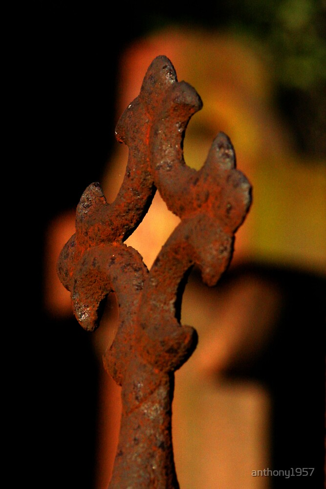 Rust in Peace by anthony1957