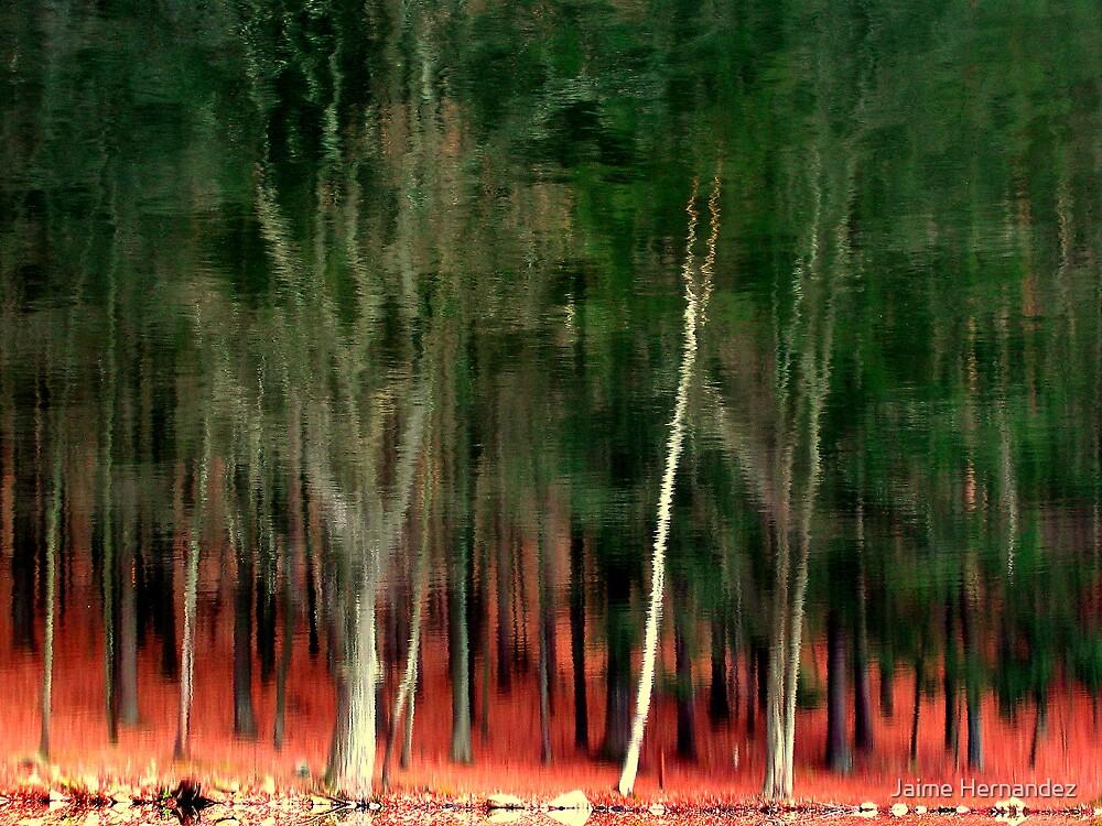 Redflections by Jaime Hernandez