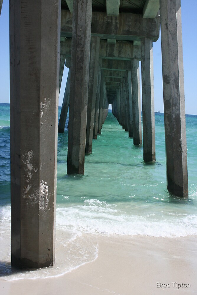 Fishing Pier by Bree Tipton