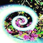 Spirals of Color (altered)  by Adam Huckfeldt