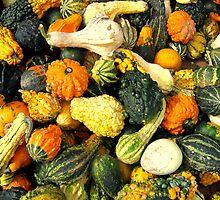 Harvest by Jaime Hernandez