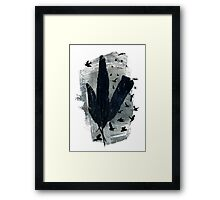 Mixed Feathers Framed Print