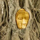 Golden Buddha by Lass With a Camera