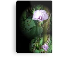 Big And Small Purple In The World Of Greens Metal Print