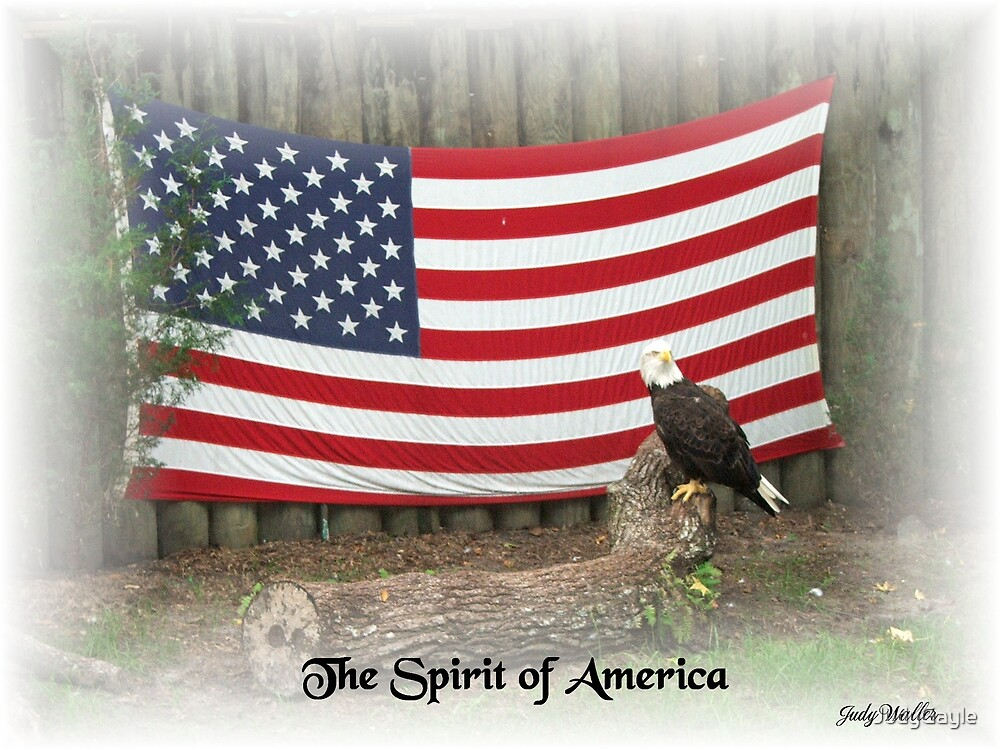 The Spirit of America by Judy Gayle Waller