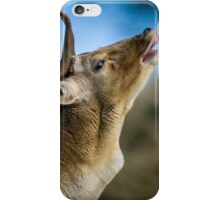 Stag Calling iPhone Case/Skin